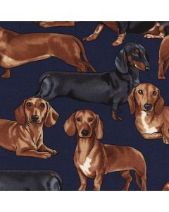 Dachshunds Navy, Timeless Treasures
