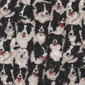 Border Collies from Makower