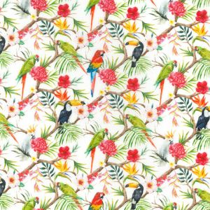 Parrots and Toucans White