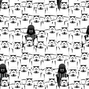 Star Wars Storm Troopers, Camelot
